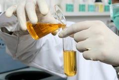 Investigación química del laboratorio Imagen de archivo libre de regalías