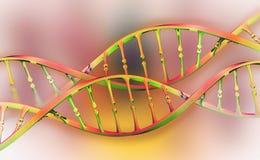 Investigaci?n del genoma de la DNA Estructura de la mol?cula de la DNA libre illustration