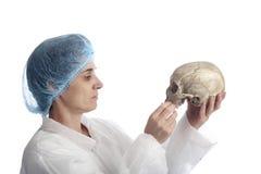Investigador de sexo femenino de la arqueología que analiza un cráneo fotos de archivo libres de regalías