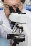 Investigador del científico con el microscopio Foto de archivo libre de regalías