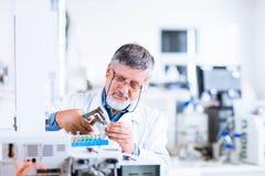 Investigador masculino sênior em um laboratório fotografia de stock royalty free