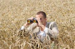 Investigador no campo Imagens de Stock Royalty Free