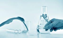 Investigador que mezcla la extracción natural orgánica, cosméticos del skincare del farmacéutico que formulan de la esencia de la foto de archivo