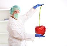 Investigador que soporta una fruta del GMO Foto de archivo libre de regalías