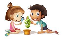 Investigadores jovenes stock de ilustración
