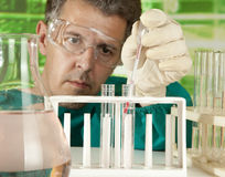 Investigator checking test tubes Royalty Free Stock Image