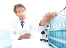Chemist looking at test-tubes with blue liquids. The investigator checks the test tubes with a blue liquid Stock Photo
