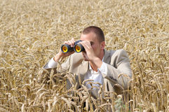 Investigator in field. Agent of secret service watching through binoculars in the field Royalty Free Stock Images