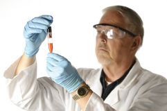 Investigue al científico Foto de archivo libre de regalías