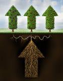 Investimento differenziato Fotografia Stock