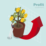 Investimento do lucro Imagens de Stock Royalty Free