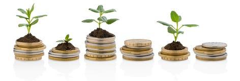 Investimentos Imagens de Stock
