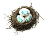 Investindo o ovo de ninho Imagens de Stock Royalty Free