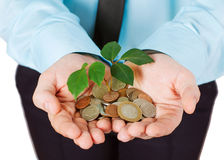 Investing to green business Stock Images