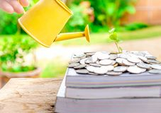 Investissement éducatif photos stock