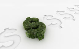 Investment. Grass dollar growth -financial concept Stock Photos