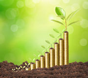 Investment concept, Coins graph stock Royalty Free Stock Image