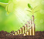 Investment concept, Coins graph stock Stock Photos