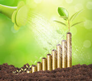 Investment concept, Coins graph stock Royalty Free Stock Photo