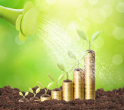 Investment concept, Coins graph stock Royalty Free Stock Images