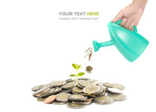 Investment concept Royalty Free Stock Photo