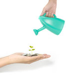 Investment concept with growth of plant Royalty Free Stock Photos