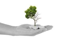 Investment concept Investment concept Investment. Concept Investment concept Stock Images