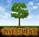 Investment and financial growth. Symbol with a tree in the shape of a dollar sign and the roots in the shape of the word investment showing profits and long Royalty Free Stock Image