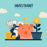 Investment Infographic layout. Stock Photos