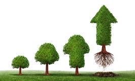Investment Maturity. Success as a business concept for growing wealth info graphic as a small tree gradually turning into a mature flying arrow plant as a Stock Photo