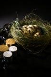 Investment Nest Egg III Stock Image