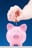 Investment or Savings Concept with a Piggy Bank Royalty Free Stock Photography