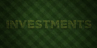 INVESTMENTS - fresh Grass letters with flowers and dandelions - 3D rendered royalty free stock image Stock Image