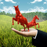 Investor carry red horse on filed Royalty Free Stock Photography