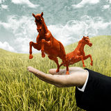 Investor carry red horse on filed Stock Photo