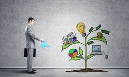 Investor watering drawing tree with symbols stock images