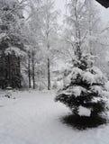 Invierno Fotos de archivo