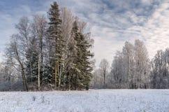 Invierno Fotografía de archivo libre de regalías