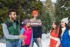 Invierno al aire libre que camina de Forest Happy Smiling Young Friends de la nieve del grupo de la gente Foto de archivo