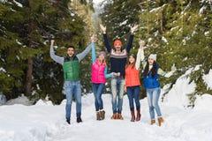 Invierno al aire libre que camina de Forest Happy Smiling Young Friends de la nieve del grupo de la gente Fotografía de archivo libre de regalías