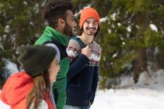 Invierno al aire libre que camina de Forest Happy Smiling Young Friends de la nieve del grupo de la gente Fotografía de archivo