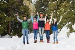 Invierno al aire libre que camina de Forest Happy Smiling Young Friends de la nieve del grupo de la gente Foto de archivo libre de regalías