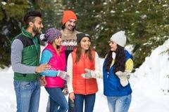 Invierno al aire libre que camina de Forest Happy Smiling Young Friends de la nieve del grupo de la gente Fotos de archivo libres de regalías