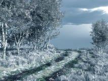 Invierno Backroad Imagen de archivo