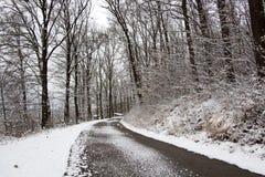 Invierno Backroad Fotos de archivo