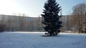 Invierno Berlín foto de archivo libre de regalías