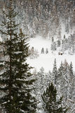 Invierno blanco Fotos de archivo libres de regalías
