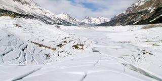 Invierno blanco Foto de archivo libre de regalías