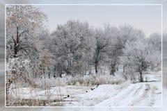 Invierno blanco como la nieve Paisaje hermoso Fotos de archivo libres de regalías