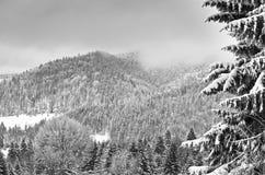 Invierno blanco en la montaña Imagen de archivo libre de regalías